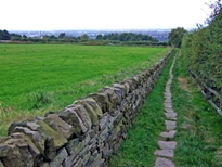 _Old_paved_path_-_geograph.org.uk_-_1536947